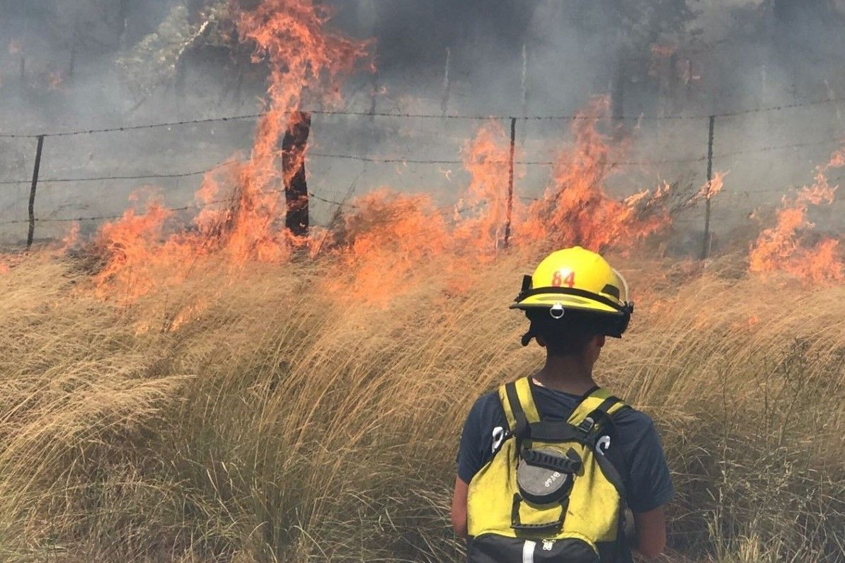 La Pampa: el incendio ya arrasó 800 mil hectáreas